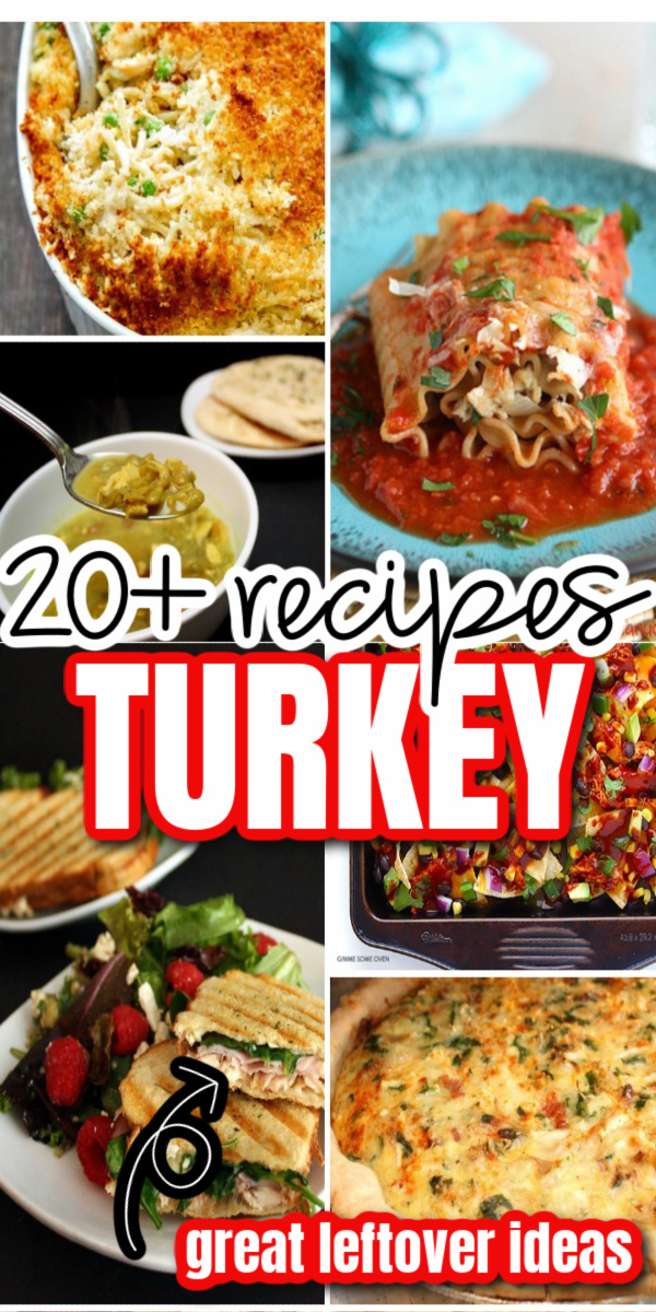 Tons of great recipes for leftover turkey great for after thanksgiving or rotisserie chickens