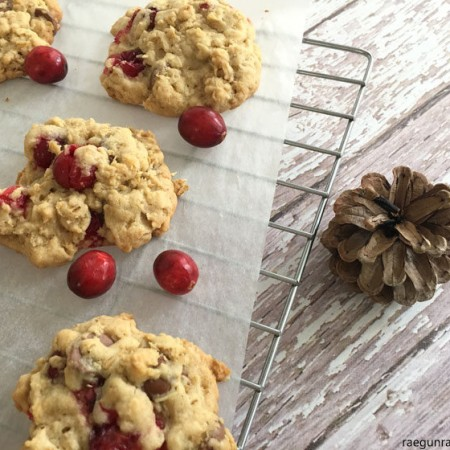 delicious breakfast cookies. Oatmeal chocolate chip cranberry cookie recipe