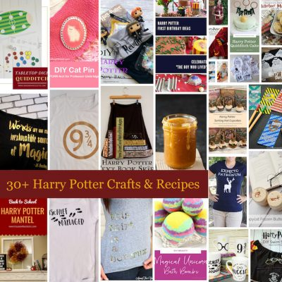 30+ Harry Potter Ideas and Block Party