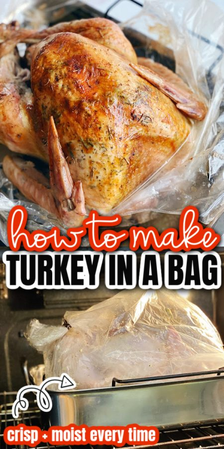 turkey cooked in an oven bag