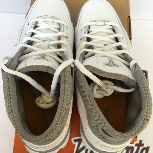 Tennessee Vols Nike Shoes
