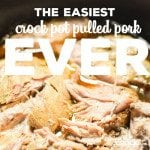 The Easiest Crock Pot Pulled Pork you will ever make!