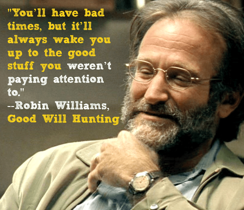 Good Will Hunting Quotes Robin Williams Love