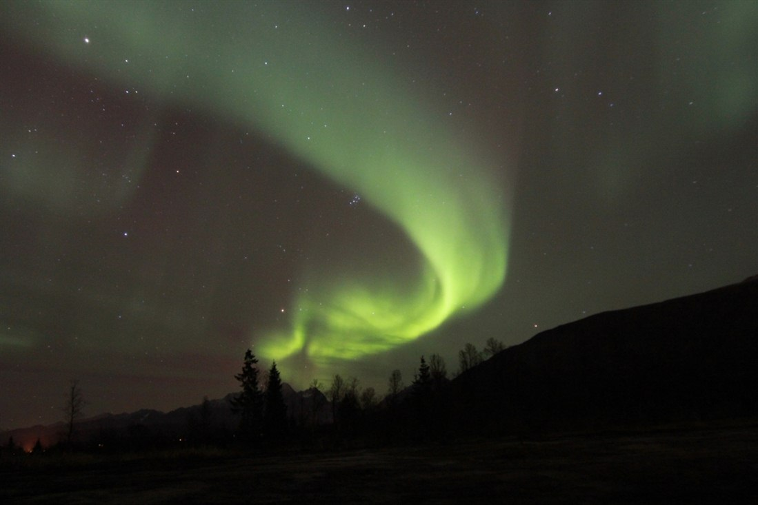 Tromso Northern Lights Tours