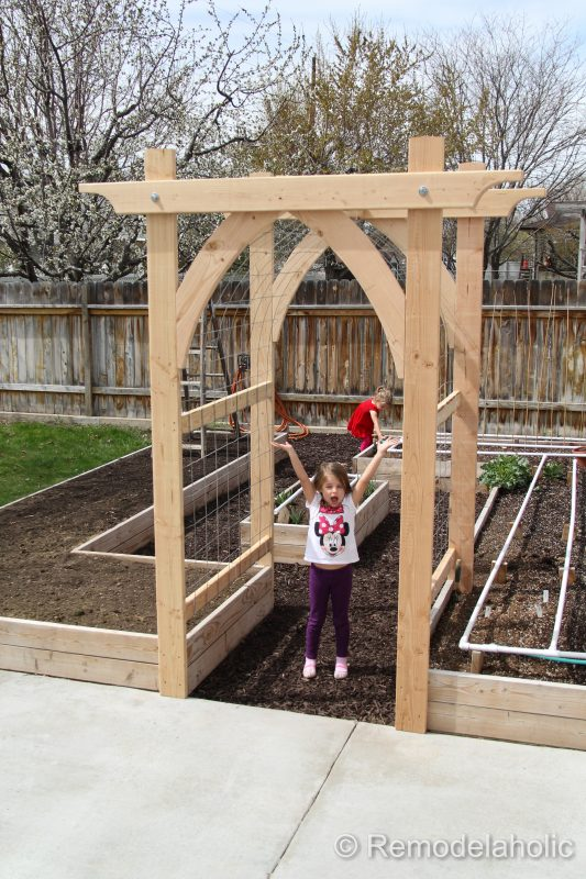 Building Your Own Raised Vegetable Garden
