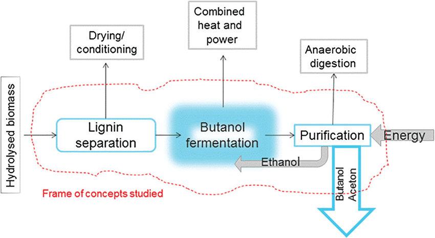 best wild flowers ethanol production process flow diagram wild rh flower inbit us
