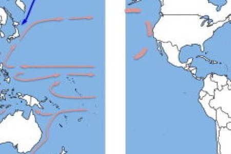 Major ocean surface currents full hd pictures 4k ultra full ocean current article questions in class assignment global ocean surface circulation k pictures k pictures full geology cafe com major ocean currents of the gumiabroncs Choice Image
