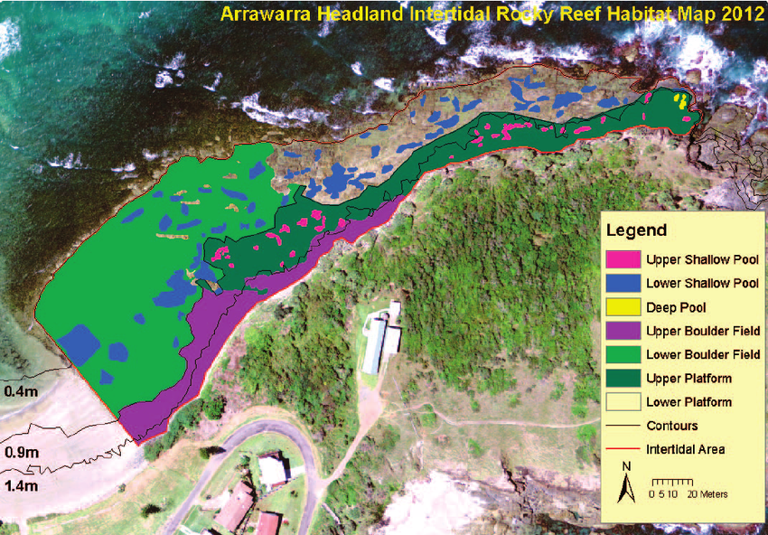 2D habitat map for Arrawarra Headland showing the extent of each     2D habitat map for Arrawarra Headland showing the extent of each habitat  across the surveyed area