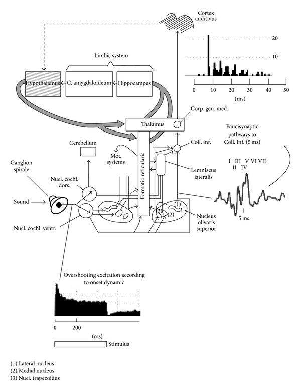 Bmw e38 radio wiring diagram engine diagram and wiring