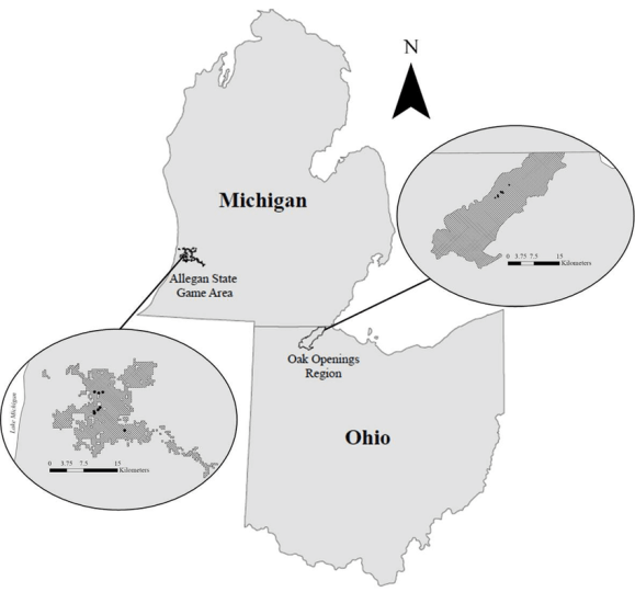 Map of the study sites in Ohio and Michigan showing the two study     Map of the study sites in Ohio and Michigan showing the two study regions of  Allegan