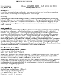 Sample Information Technology Resume Resume Express