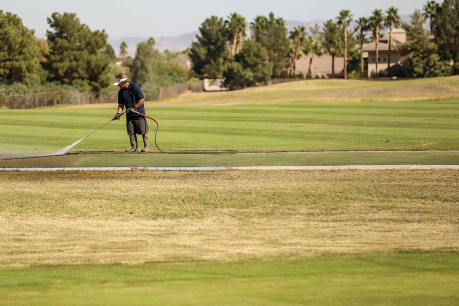 Henderson s Legacy Golf Course set to reopen     Las Vegas Review Journal A worker waters the lawn at Legacy Golf Club in Henderson  Thursday  Oct