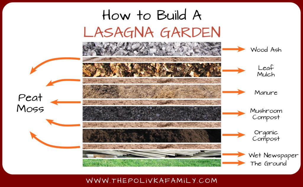 What Wood Use Raised Vegetable Garden