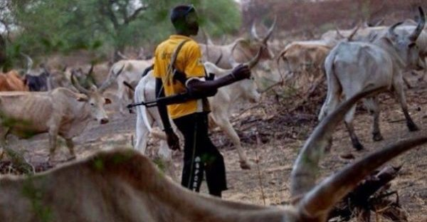 Afenifere advices Buhari to declare amnesty for killer herdsmen, others