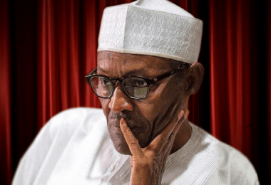 REVIEW... Buhari's Crumbling Cards