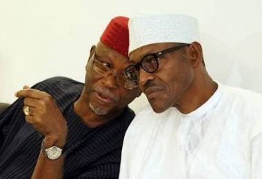 While Tinubu struggles to resolve APC crises Pro-Buhari protesters block party hq, demand Oyegun's exit