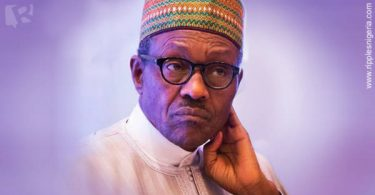 Leaders of regional groups worried over Buhari's rule of law comment
