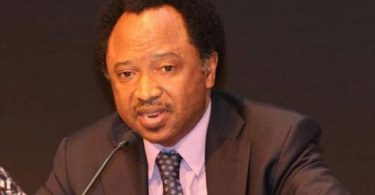 SEN SANI TO NIGERIANS: Ask Buhari, govs, others to reveal their monthly take home