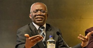 Falana sues Nigerian govt over incessant killings by herdsmen
