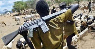 Scores killed as herdsmen attack villagers in Benue again