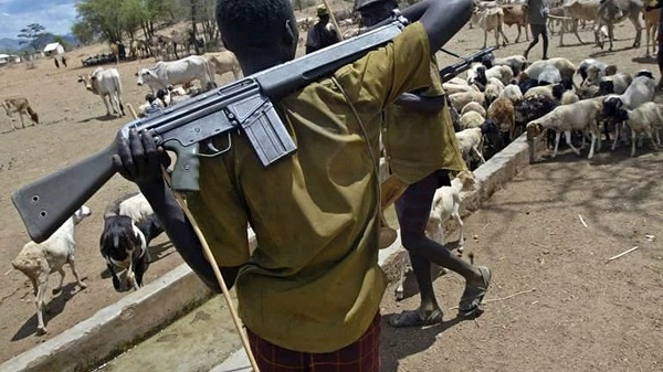 Suspected Fulani herdsmen kill 6 in Adamawa villages