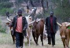 Herdsmen abduct four Reverend Fathers in Delta