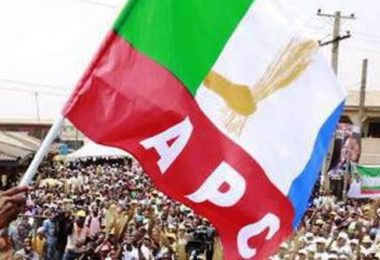 CONVENTION: List of winners of APC national offices
