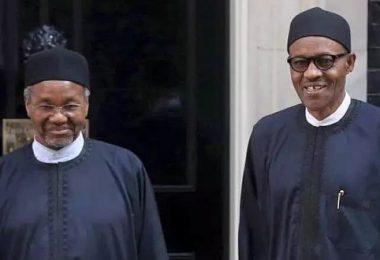 Out-of-favour Daura plots return to Aso Villa