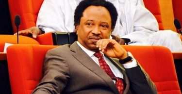 I'm yet to migrate from APC, still consulting - Shehu Sani