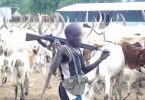 Tension in Plateau community as herdsmen ambush, kill 3 soldiers ambushed