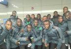 Golden Eaglets