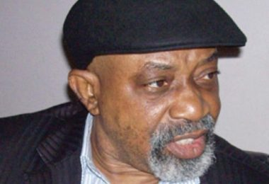 MINIMUM WAGE: Ngige sings new tune, says employees can't fix his salary