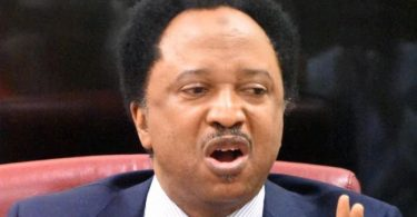 Unite or North will produce president in 2023, Sani warns South