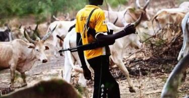 ONDO: Herdsmen kidnap woman, stepson, demand N10m ransom