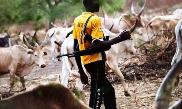 Fulani group explains why herdsmen carry arms