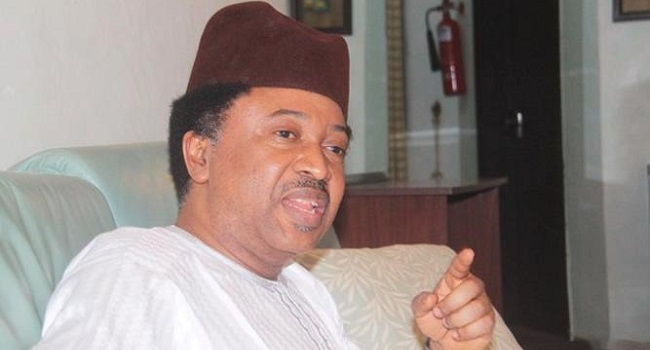 RUGA: 'Don't throw butter into a pan of hot oil,' Sani warns Buhari
