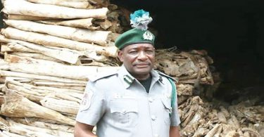 Customs seize N15bn donkey hides, N16bn drugs in Lagos, Ogun