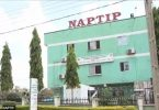 NAPTIP arrests travel agent for human trafficking in Benin