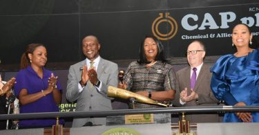 CAP PLC's full-year revenue gains N740m but rising costs weaken profit by 14%