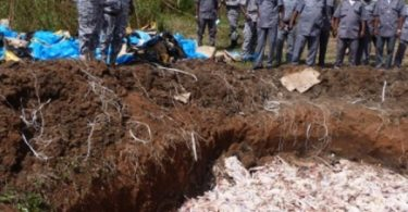 Nigerian Customs destroys imported poultry products worth N20.7m