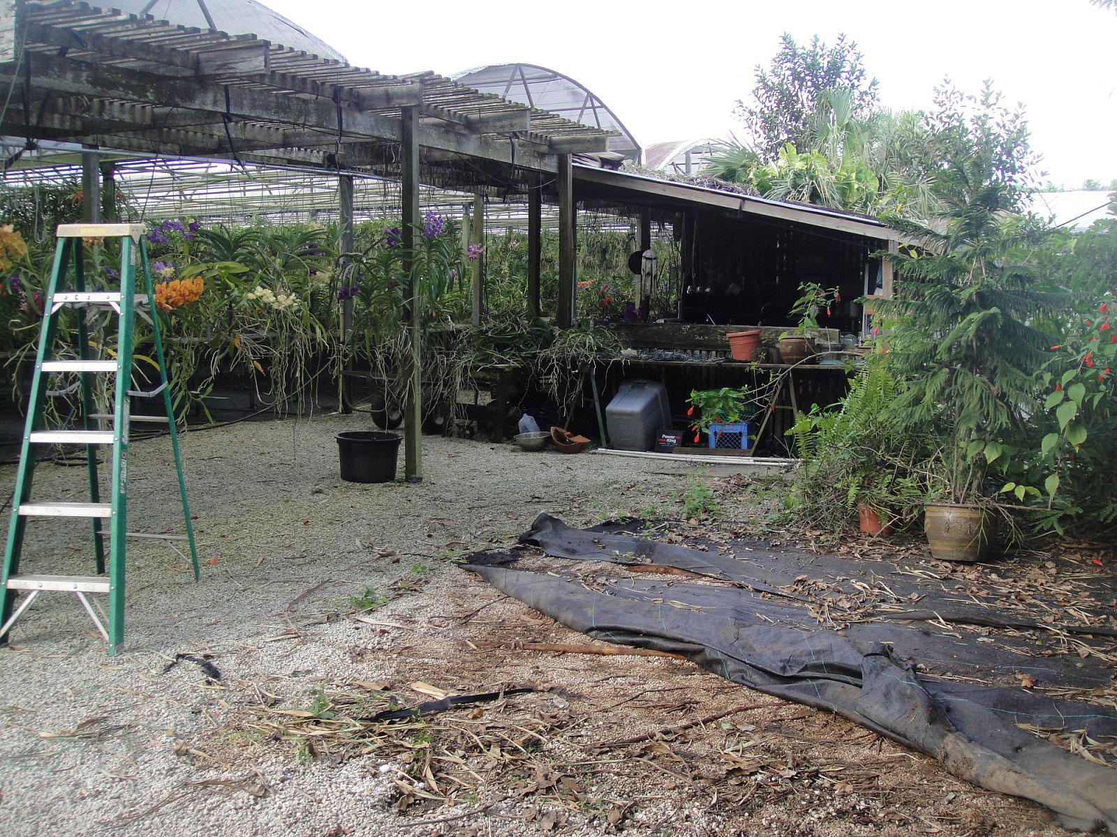 Landscape Plan Overlook