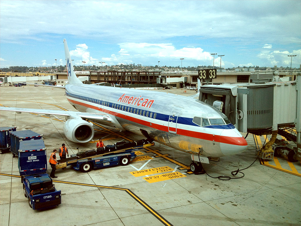 American Airlines 738 Plane