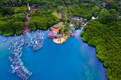Menjangan Island in Bali is One of the Best Diving Spot in ...