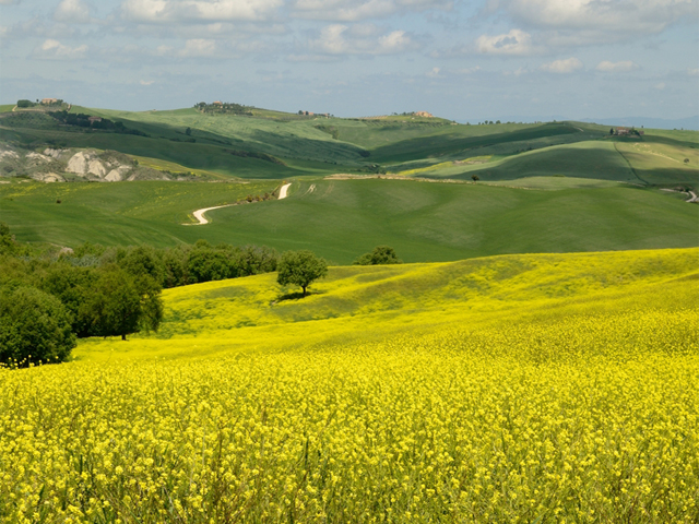 Unconventional Tuscany