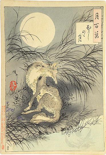 Drama Wolf Chinese