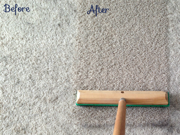 My Secret Weapon that Picks Up More Dog Hair   School of Decorating How to remove more dog hair and make your carpet look new again    tealandlime