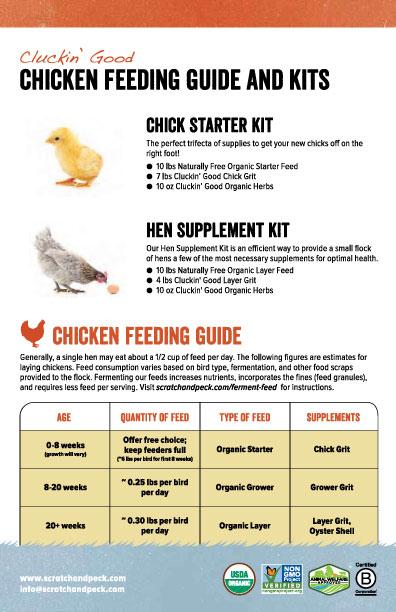 Cluckin Chicken