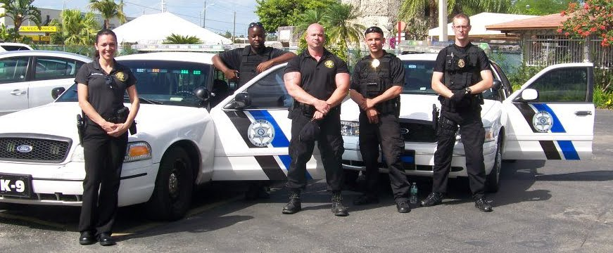 Celebrity Services Security Vip Protection