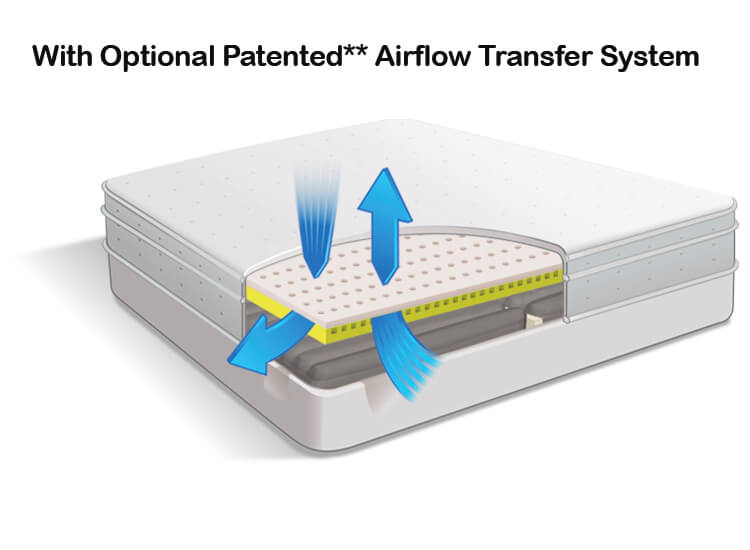 Air Pedic 500 Optional Patented Airflow Transfer Sytem