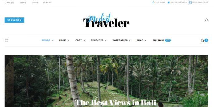 Theme WordPress Terbaik Untuk Personal Blogger - authentic
